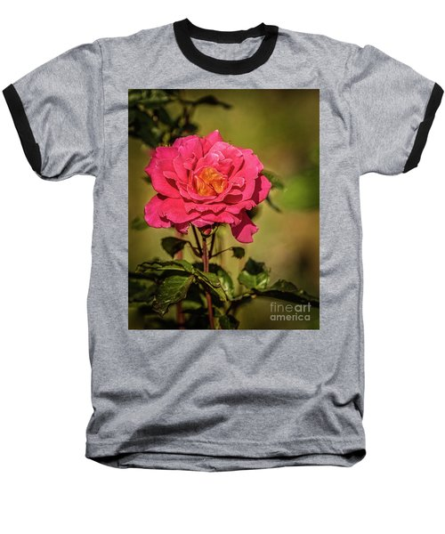Baseball T-Shirt featuring the photograph Vignetted  Rose by Robert Bales