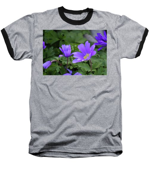 Vinca In The Morning Baseball T-Shirt