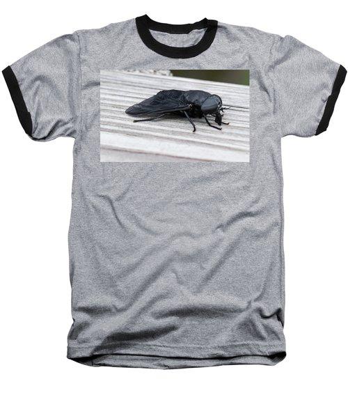Vincent Price Or Jeff Goldblum? Baseball T-Shirt