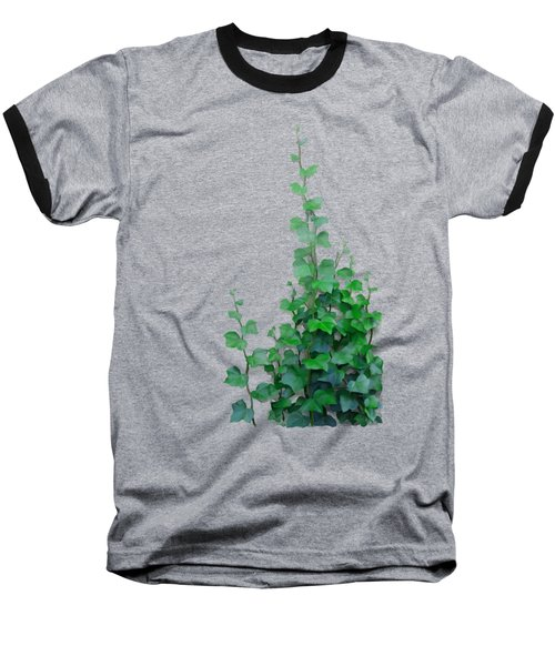Vines By The Wall Baseball T-Shirt by Ivana