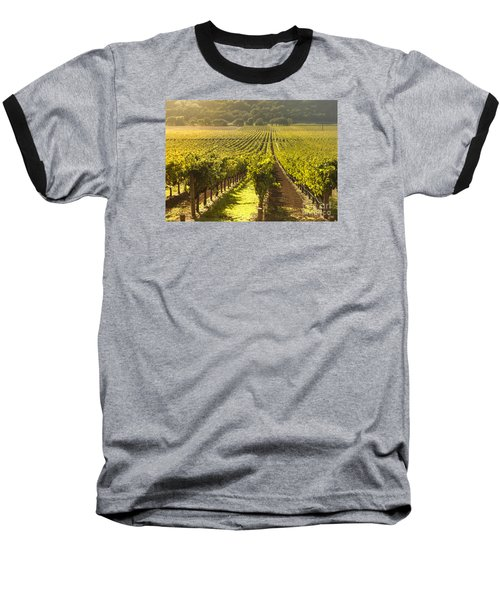 Vineyard In Napa Valley Baseball T-Shirt by Diane Diederich