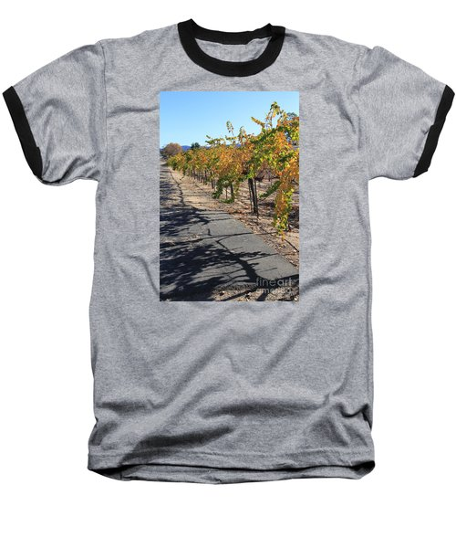 Vineyard Shadows Baseball T-Shirt
