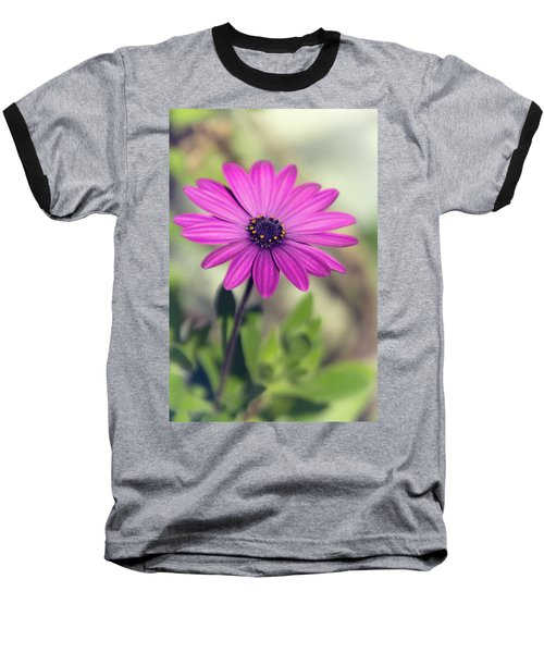 Baseball T-Shirt featuring the photograph Vintage Purple Daisy  by Saija Lehtonen