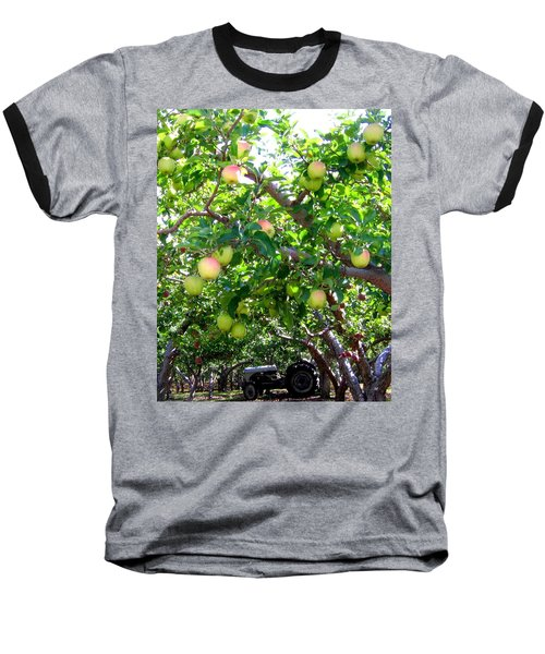 Vintage Tractor In Apple Orchard Baseball T-Shirt by Will Borden