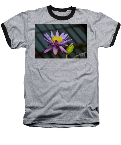 Violet And Yellow Water Lily Flower With Unopened Bud Baseball T-Shirt