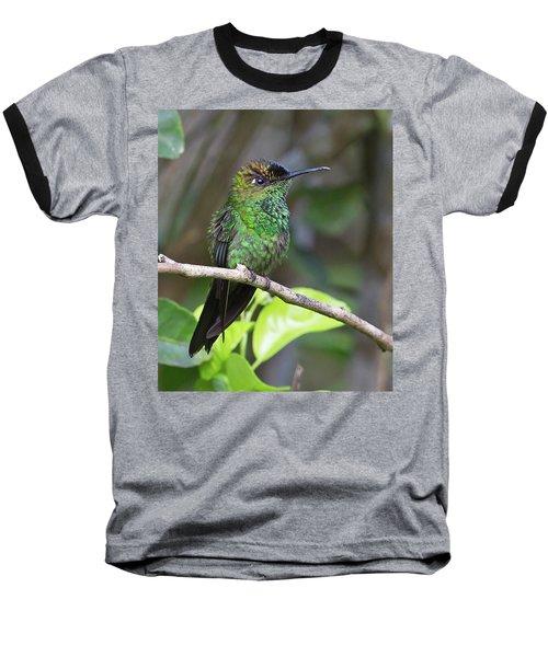 Violet-fronted Brilliant Baseball T-Shirt