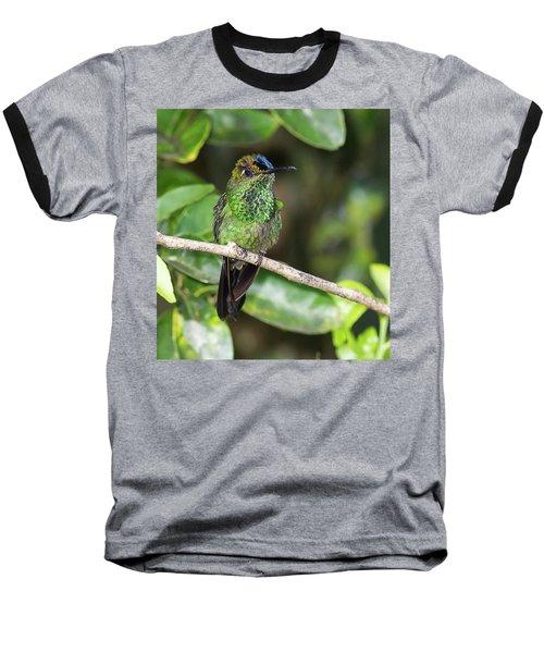 Violet-fronted Brilliiant Baseball T-Shirt