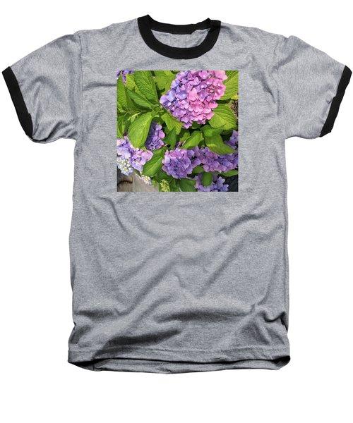 Violet Persuasion Baseball T-Shirt