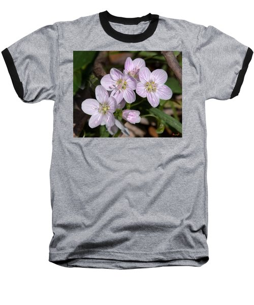 Virginia Or Narrowleaf Spring-beauty Dspf041 Baseball T-Shirt
