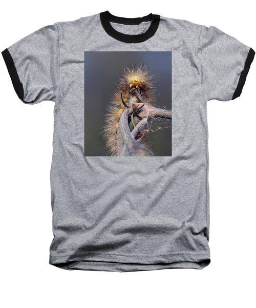 Virginian Tiger Moth 4 Baseball T-Shirt