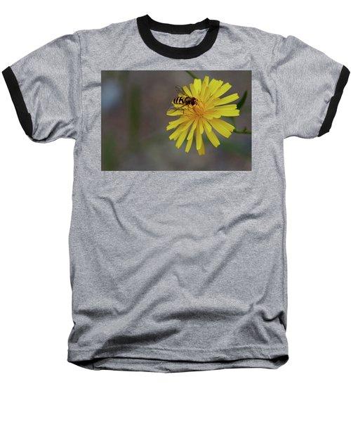 Visitor Baseball T-Shirt