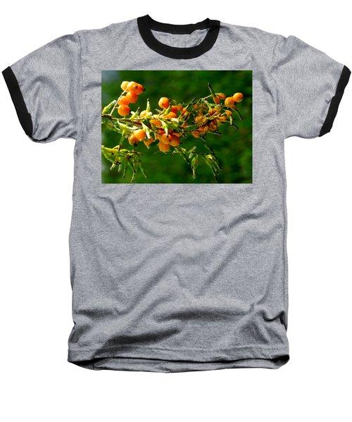Vivid Berries Baseball T-Shirt