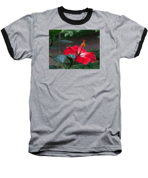 Vivid Hibiscus Baseball T-Shirt