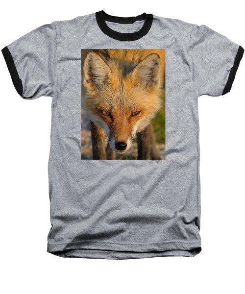 Vixen Baseball T-Shirt