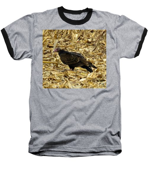 Vulture In The Corn Field  Baseball T-Shirt by Keith Stokes