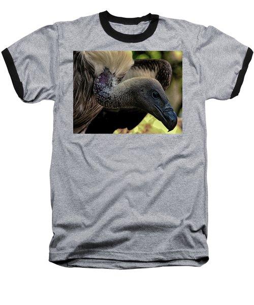 Vulture Baseball T-Shirt by Martin Newman