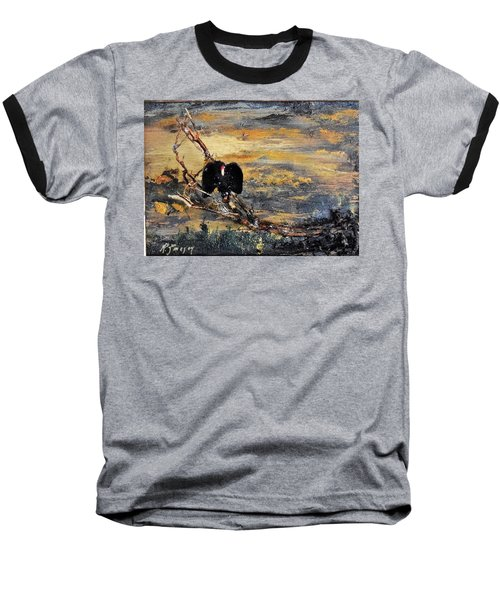 Vulture With Oncoming Storm Baseball T-Shirt