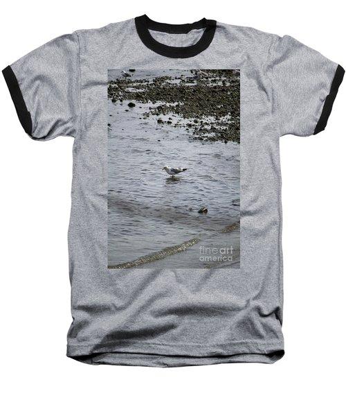 Wading Gull Baseball T-Shirt