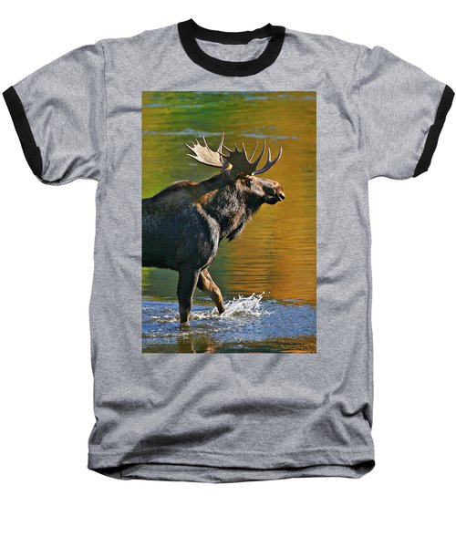 Baseball T-Shirt featuring the photograph Wading Moose by Wesley Aston
