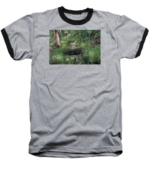 Wading Through The Swamp Baseball T-Shirt by Kenneth Albin