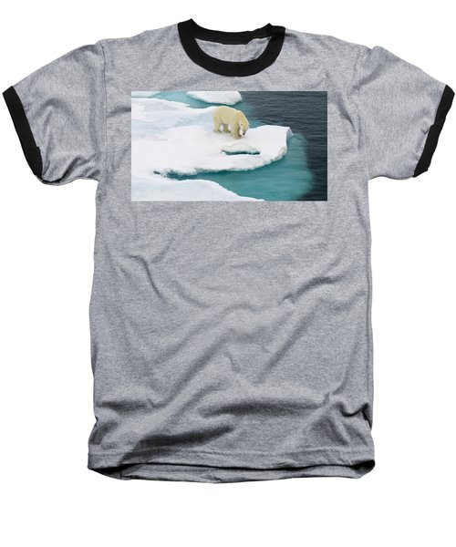 Waiting For Seal Baseball T-Shirt