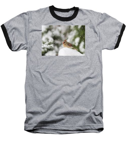 Waiting Out The Snow Baseball T-Shirt