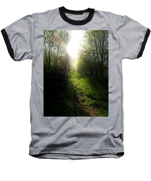 Walk In The Woods Baseball T-Shirt by Michele Carter