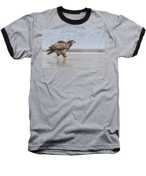 Walk Like An Eagle Baseball T-Shirt by Kelly Marquardt