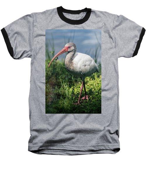 Walk On The Wild Side  Baseball T-Shirt by Saija Lehtonen