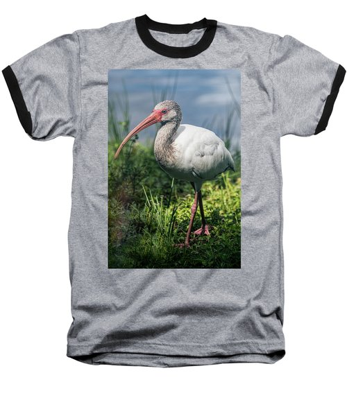 Walk On The Wild Side  Baseball T-Shirt