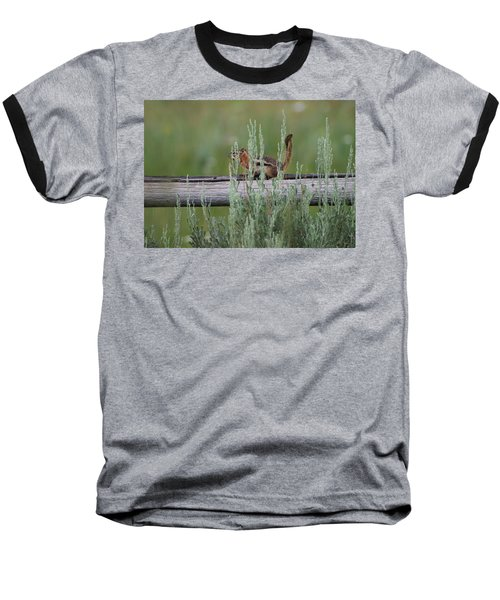 Walking The Line Baseball T-Shirt