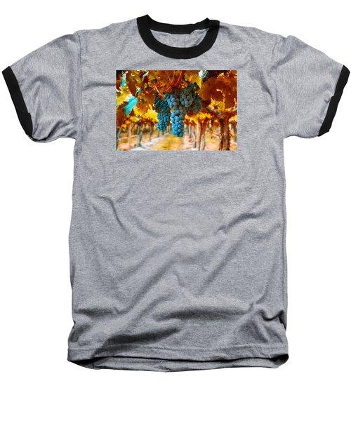 Walking Through The Grapes Baseball T-Shirt by Lynn Hopwood