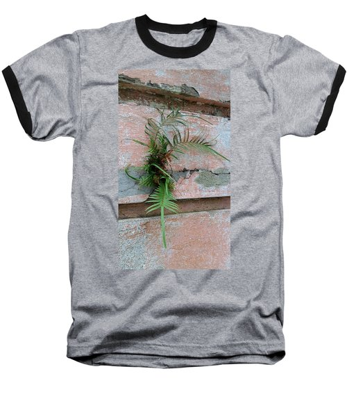 Wall Fern Baseball T-Shirt