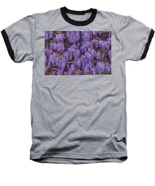 Wall Of Wisteria Baseball T-Shirt