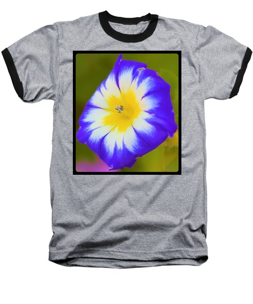 Wallflower Baseball T-Shirt