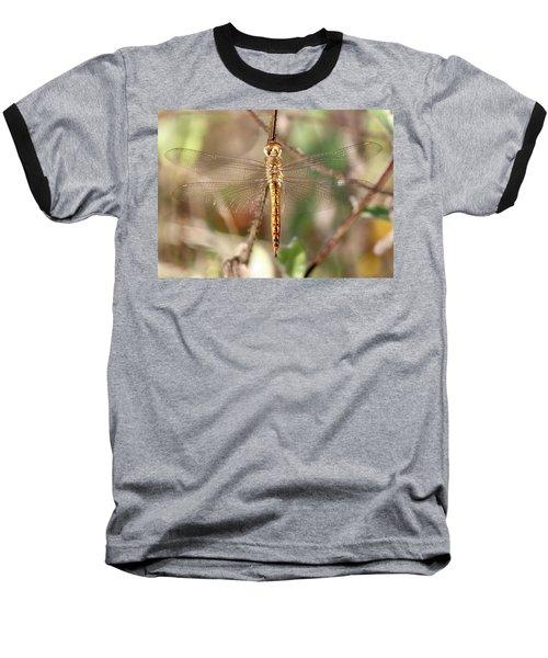 Wandering Glider Baseball T-Shirt