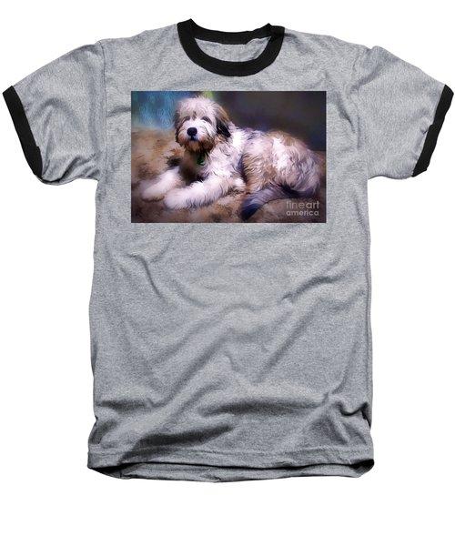 Want A Best Friend Baseball T-Shirt