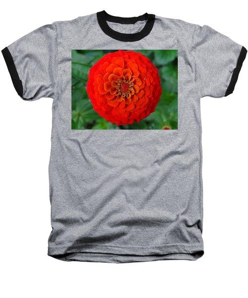 Want An Orange ? Baseball T-Shirt