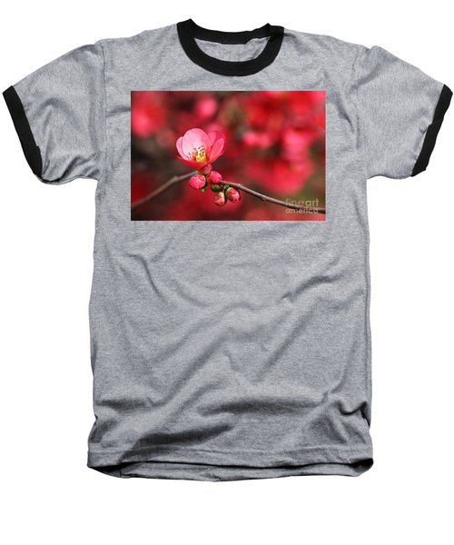 Warmth Of Flowering Quince Baseball T-Shirt
