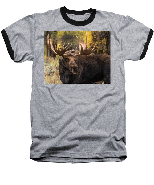 Washakie In The Autumn Beauty Baseball T-Shirt