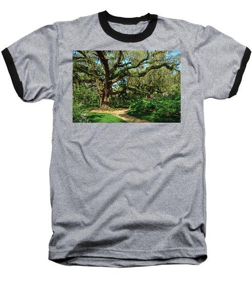 Washington Oaks Gardens Baseball T-Shirt