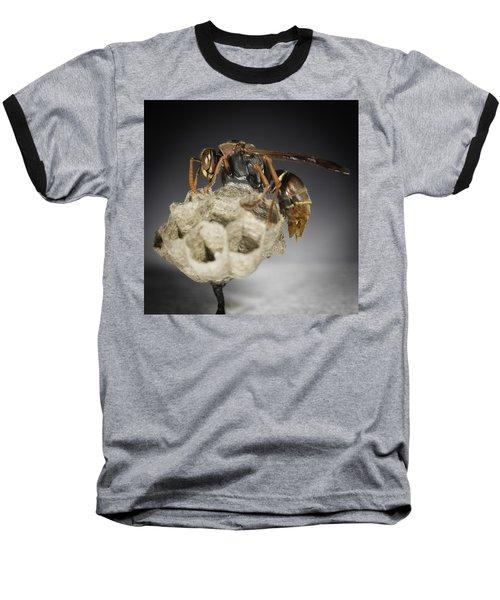 Wasp On A Nest Baseball T-Shirt