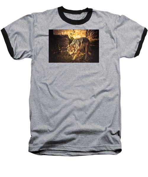 Watch Your Step Baseball T-Shirt