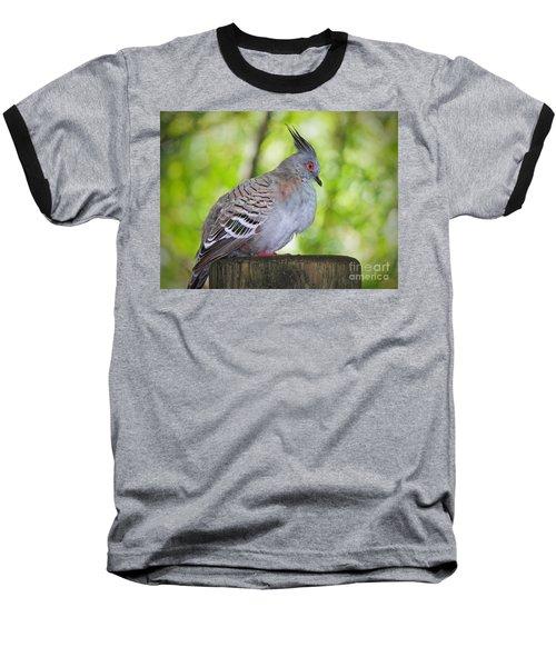 Watchful Eye Baseball T-Shirt by Judy Kay