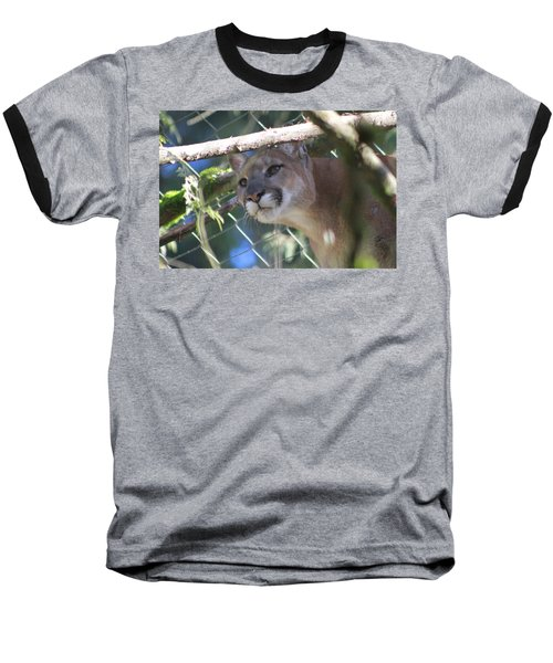 Baseball T-Shirt featuring the photograph Watchful Eyes by Laddie Halupa