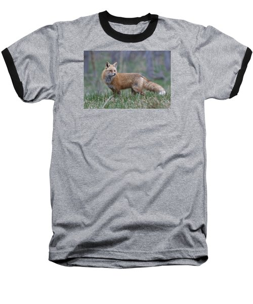 Baseball T-Shirt featuring the photograph Watchful by Gary Lengyel