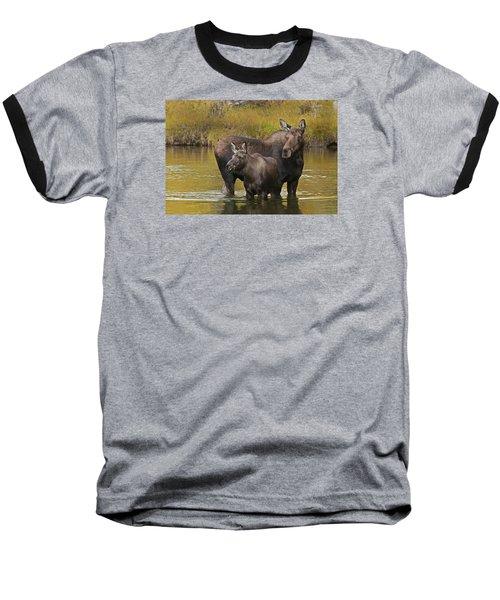 Watchful Moose Baseball T-Shirt