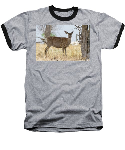 Watching From The Woods Baseball T-Shirt by James BO Insogna