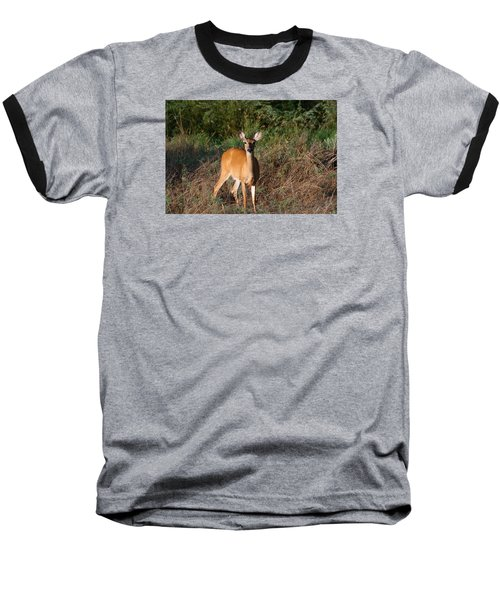 Baseball T-Shirt featuring the photograph Watching Me Closely by Monte Stevens