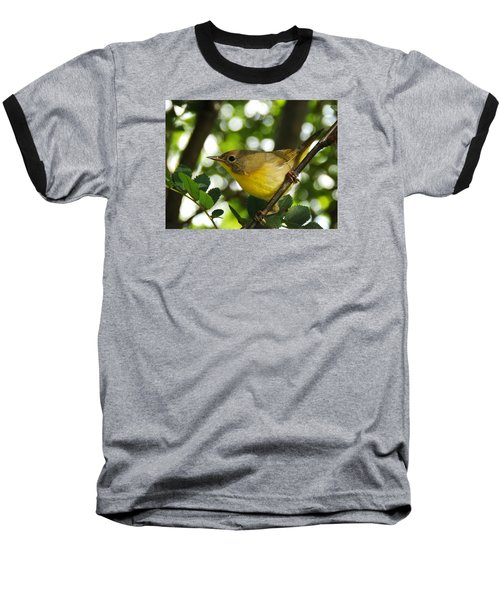 Watching The Season Change Baseball T-Shirt